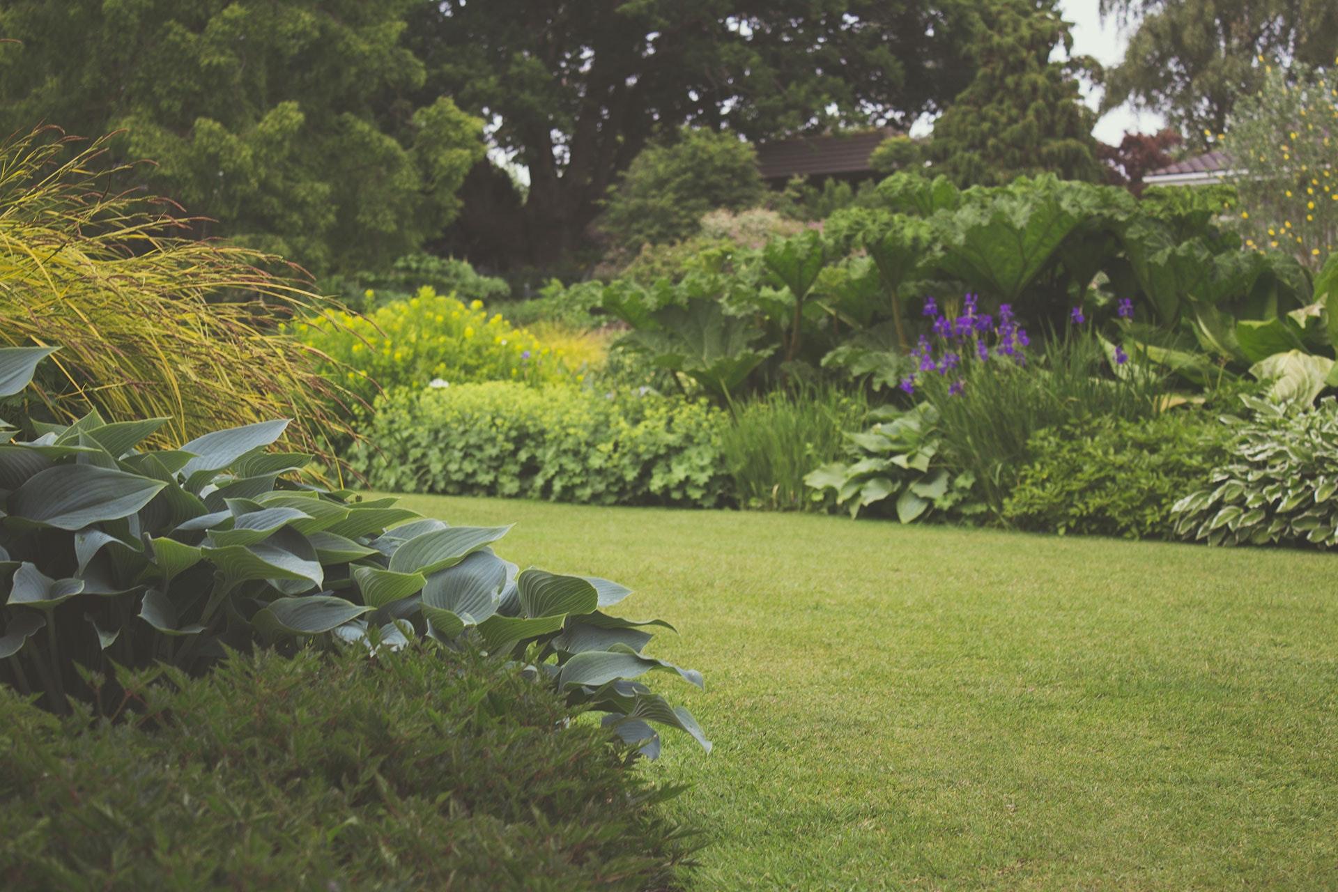 garden-7283