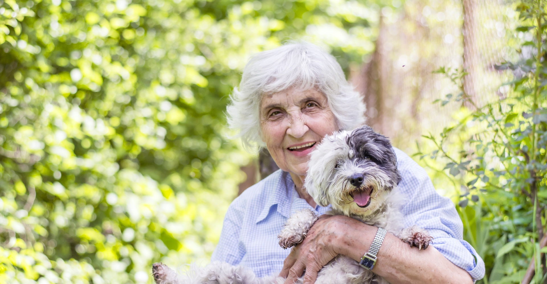 stock-photo-senior-smiling-woman-hugging-her-dog-in-the-mountain-195916712_HI-1